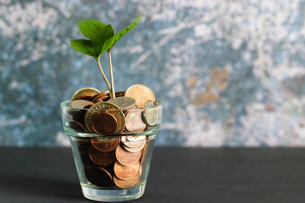Aus einem Glas mit Münzen wächst ein Pflänzchen